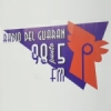 Radio Del Guaran 98.5 FM