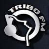 Rádio Tribo FM