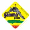 Gamma Gioiosa Golden Hits 94.5 FM
