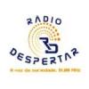 Rádio Despertar 91.0 FM