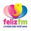 Rádio Vida 91.3 FM