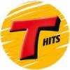 Rádio Transamérica Hits 105.9 FM