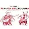 Radio Myzeqeja 104.1 FM