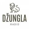 Rádio Dzungla 103.6 FM