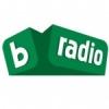 BTV Rádio 101.1 FM