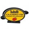 Rádio Cajueiro 104.9 FM
