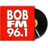 Radio KSRV 96.1 FM