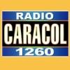Radio WSUA 1260 AM
