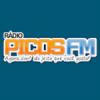 Rádio Picos FM