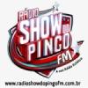 Rádio Show Do Pingo