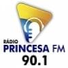 Rádio Princesa do Norte 90.1 FM