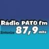 Rádio Pato 87.9 FM