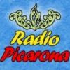 Radio Picarona 102.5 FM