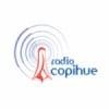 Radio Copihue FM 102.1 FM