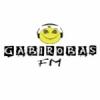 Rádio Gabirobas 87.9 FM