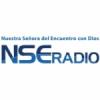 NSE Radio 91.3 FM