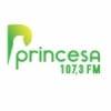 Rádio Princesa 107.3 FM