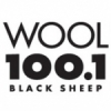 WOOL 100.1 FM