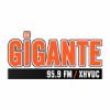Radio La Gigante 95.9 FM