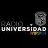 Radio Universidad 91.3 FM