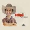 Grupo Felipe Alves