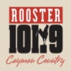 Radio The Rooster 101.9 FM