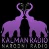 Radio Kalman 91.5 FM
