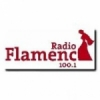 Radio Flamenca 100.1 FM