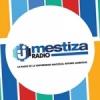 Mestiza Radio 102.7 FM