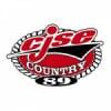 Radio CJSE 89.5 FM