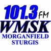 Radio WMSK 101.3 FM