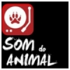 Som do Animal