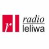 Leliwa 93.5 FM