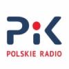 Pik 100.1 FM