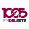 Radio Del Este 100.5 FM