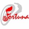 Fortuna Radio 91.6 FM