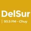 Radio DelSur 93.5 FM