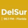 Radio DelSur 96.1 FM