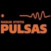 Pulsas 96.6 FM