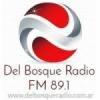 Radio Del Bosque 89.1 FM