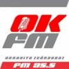 Radio OK 95.5 FM