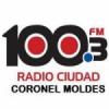 Radio Ciudad 100.3 FM