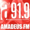 Radio Amadeus 91.9 FM