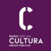 Radio DelSur 1290 AM