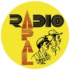 Radio APAL 94.9 FM