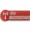 Rádio Flor da Serra do Sul 104.9 FM