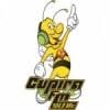 Rádio Cupira 104.9 FM