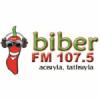 Radio Biber 107.5 FM