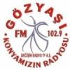 Radio Gozyasi 102.9 FM