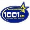 Radio 1001 100.7 FM
